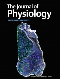 2020-the_journal_of_physiology_cover